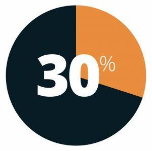 Pie chart showing 30%