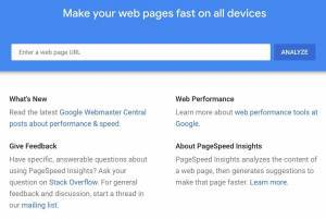 screenshot of Google PageSpeed Insights tool